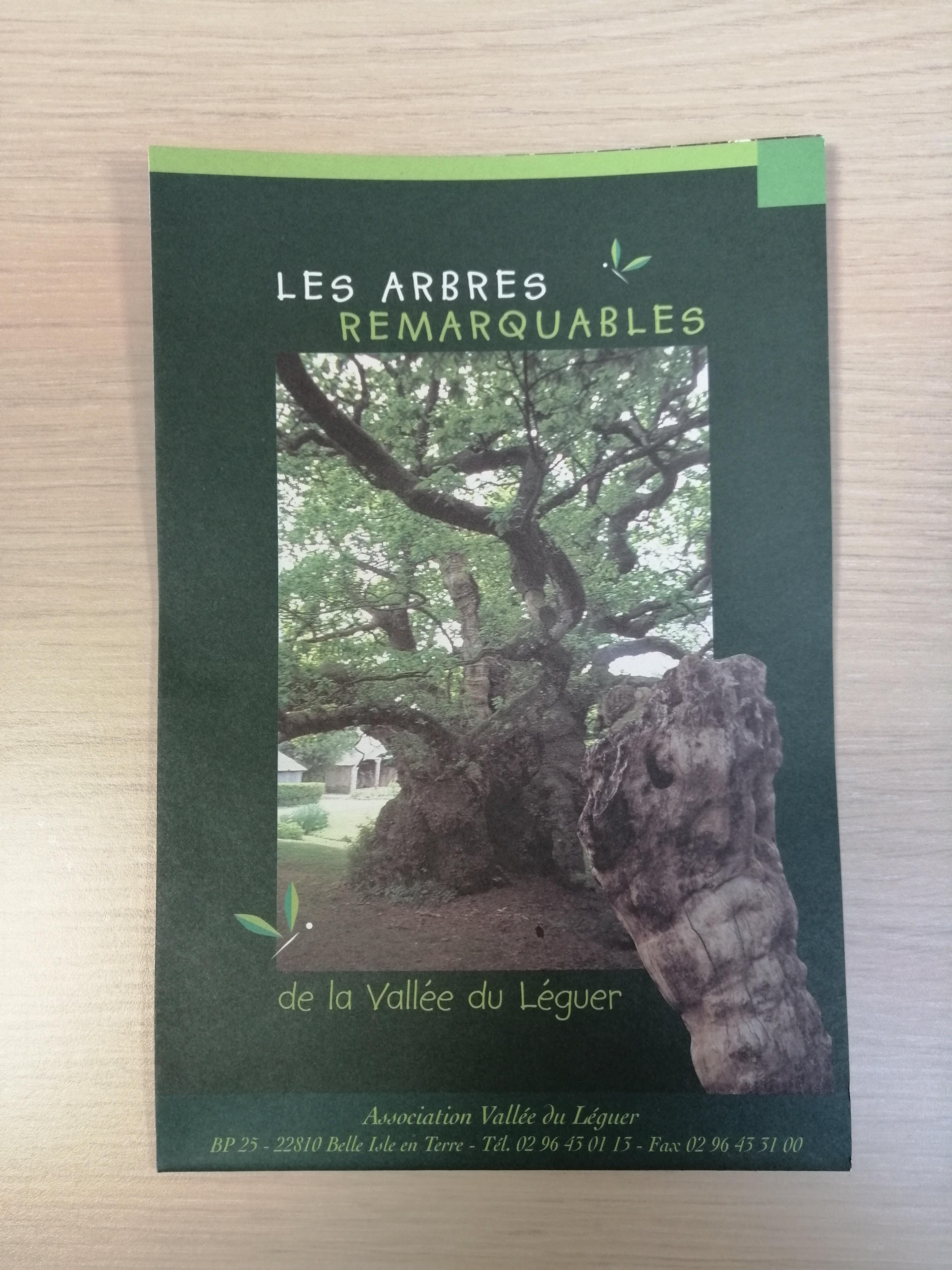 03 - Les arbres remarquables